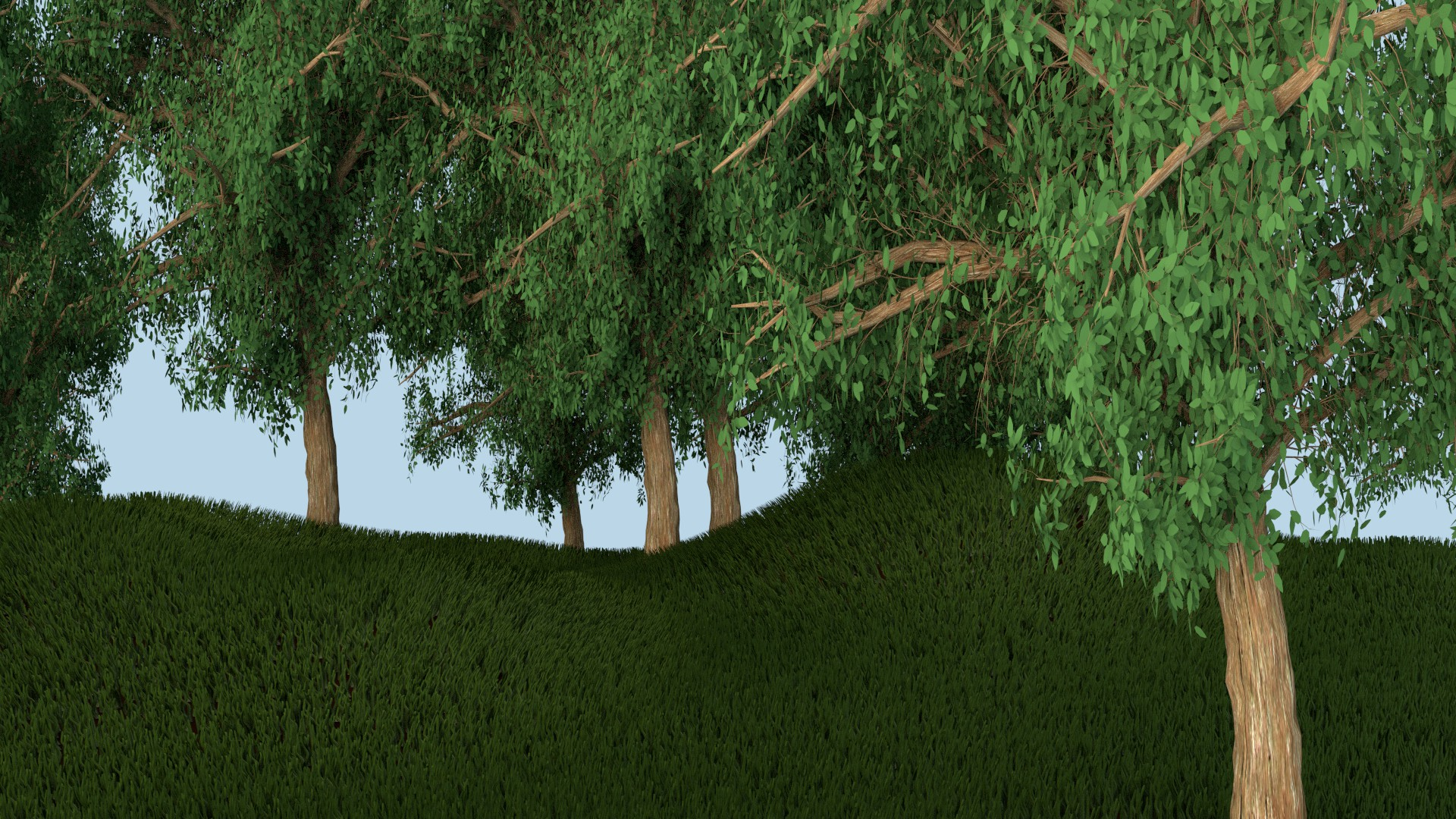Grassy Hill 2