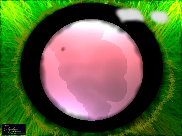 Fathers Eye