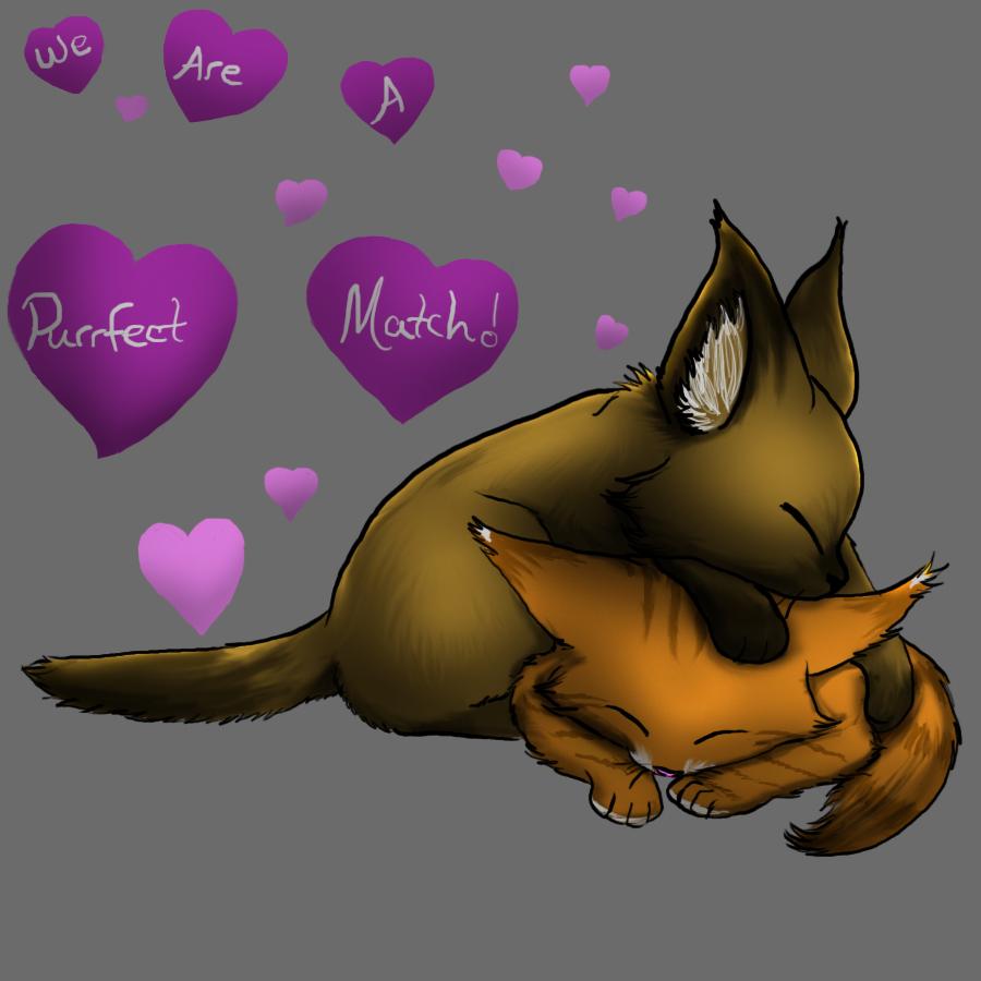 Purrfect Match
