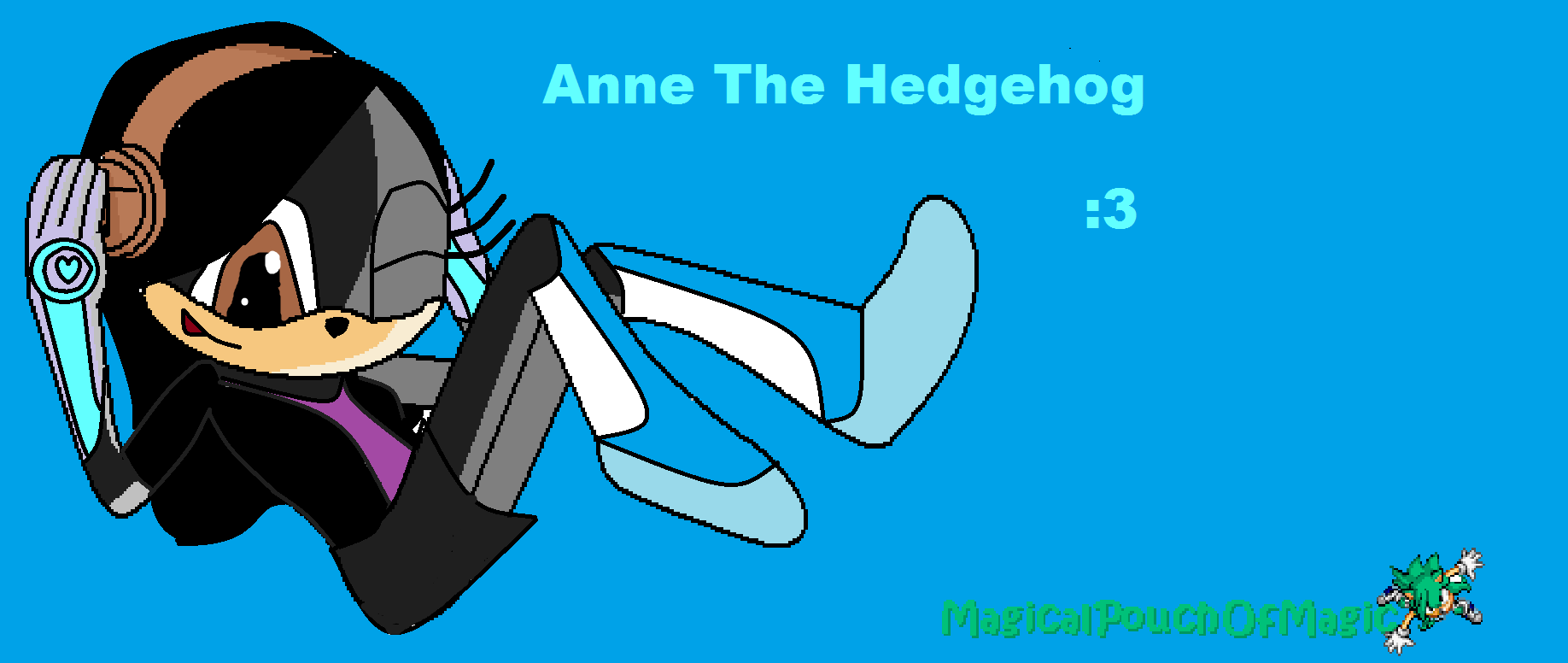 Anne The Hedgehog