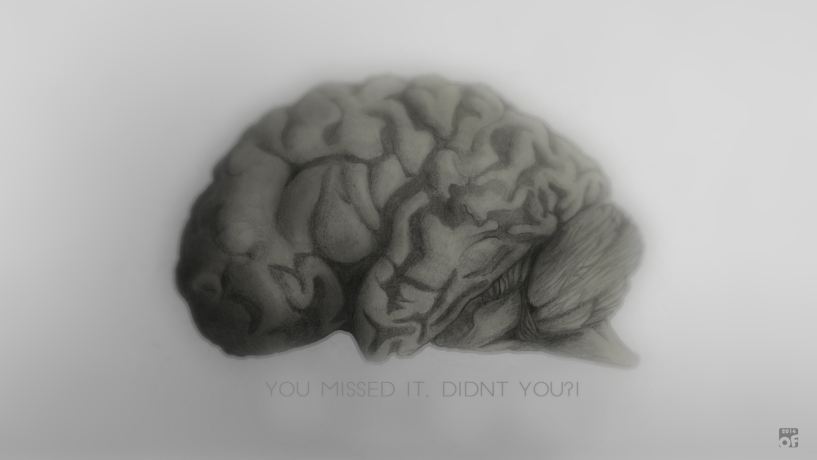 Realistic brain drawing