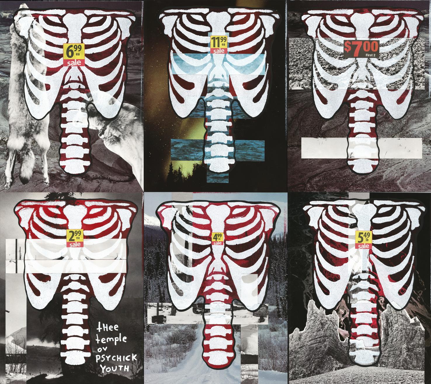 six ribcages