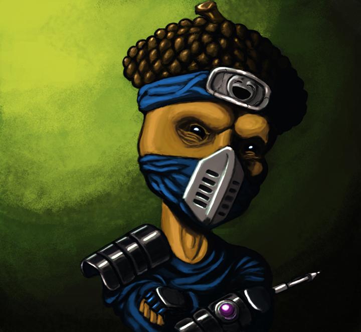 haha ... ninja nut