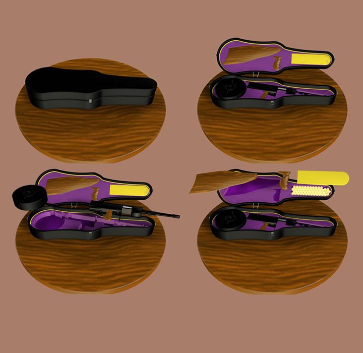 Ganster Violin Case