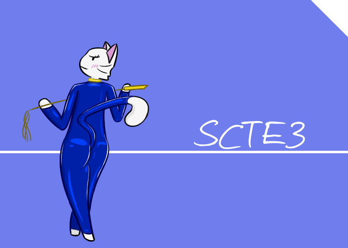 I drew SCTE3 once