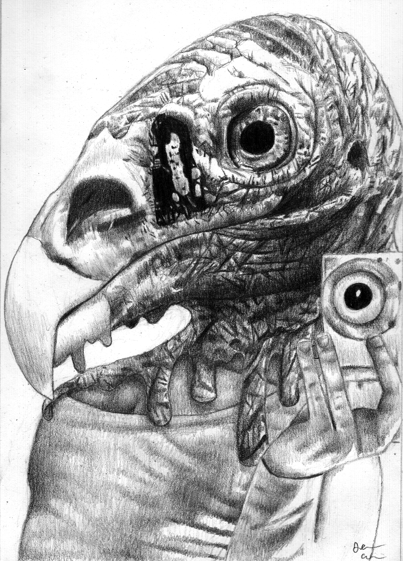 Bird Brain
