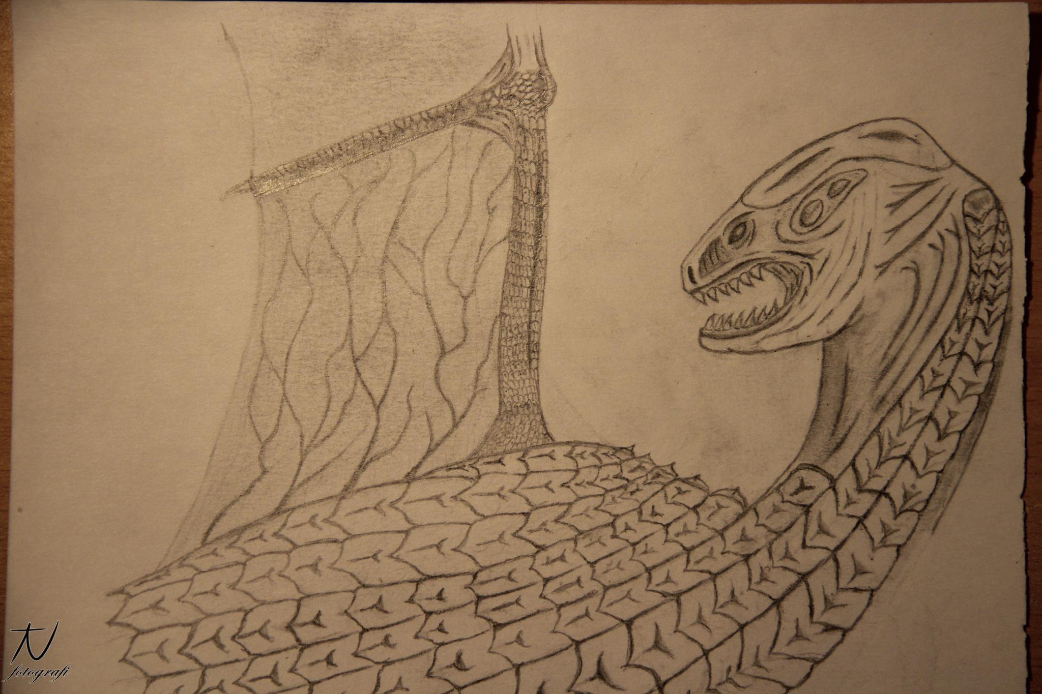 A dragon