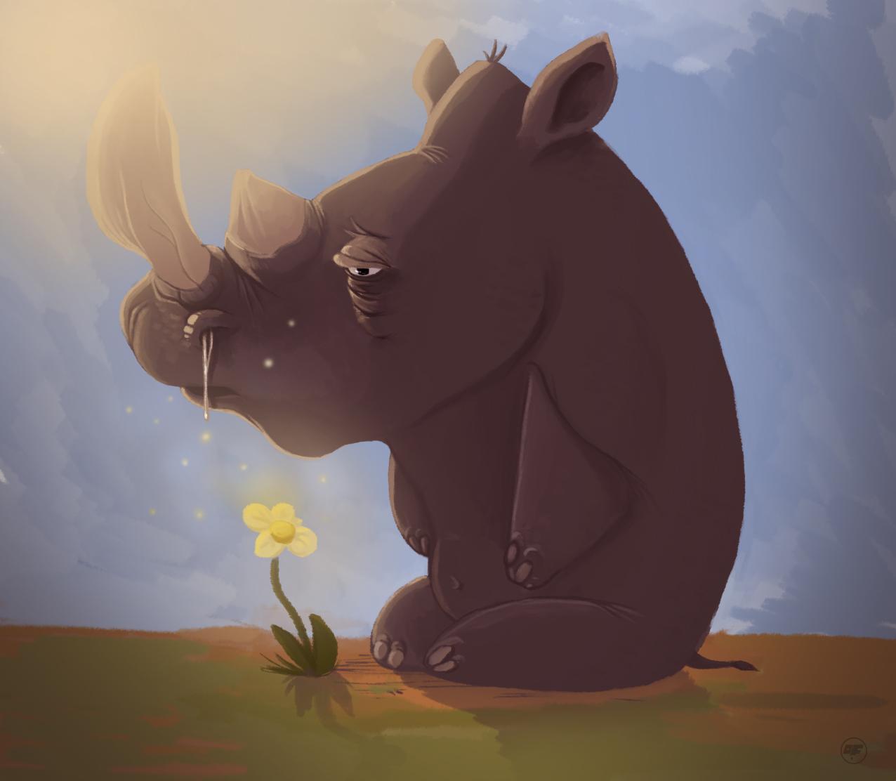 Allergic rhino