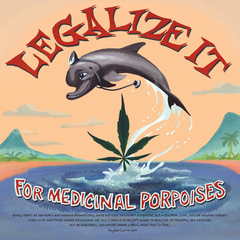 Medicinal Porpoises