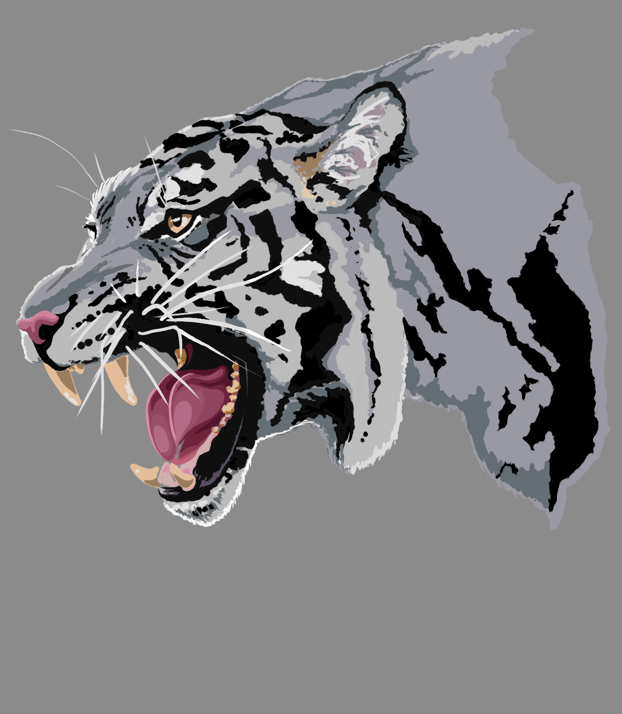 Tiger Update