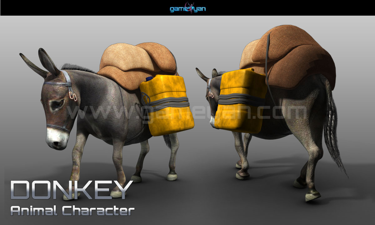 Donkey Character Animation
