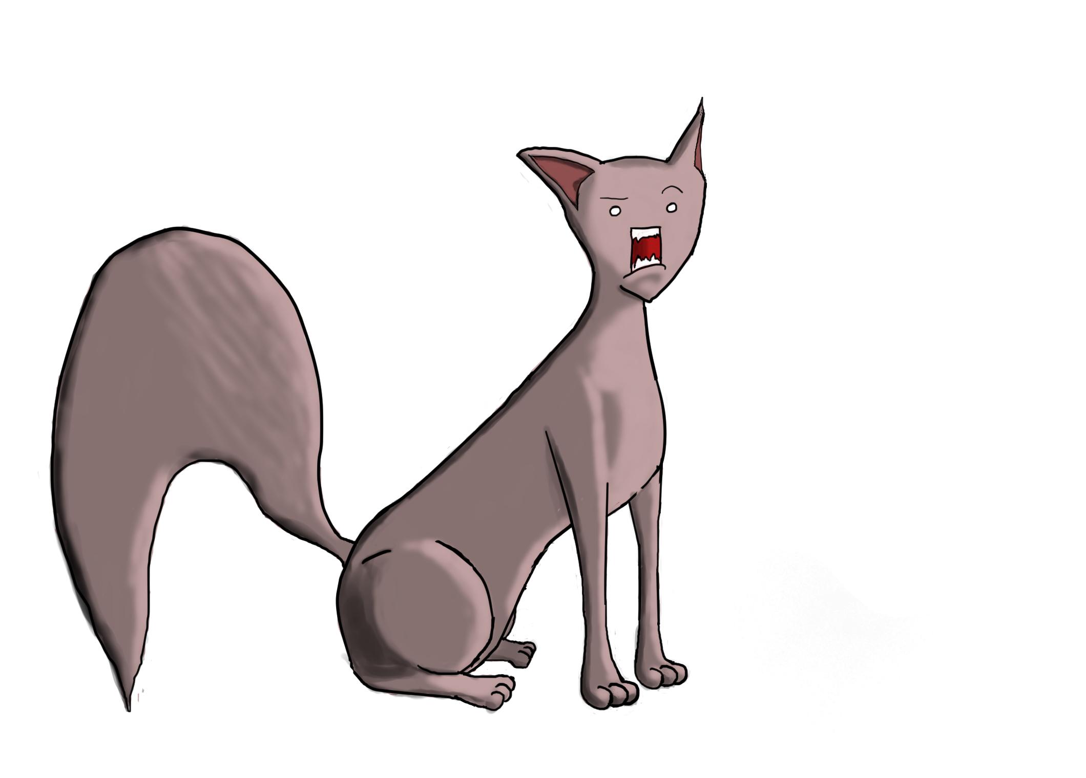 Random...Cat?