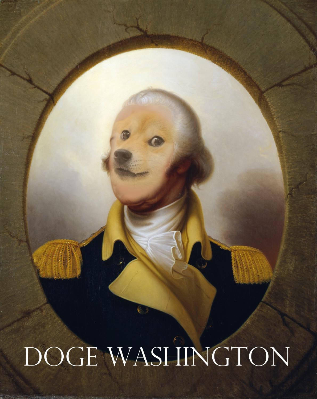 Doge Washington
