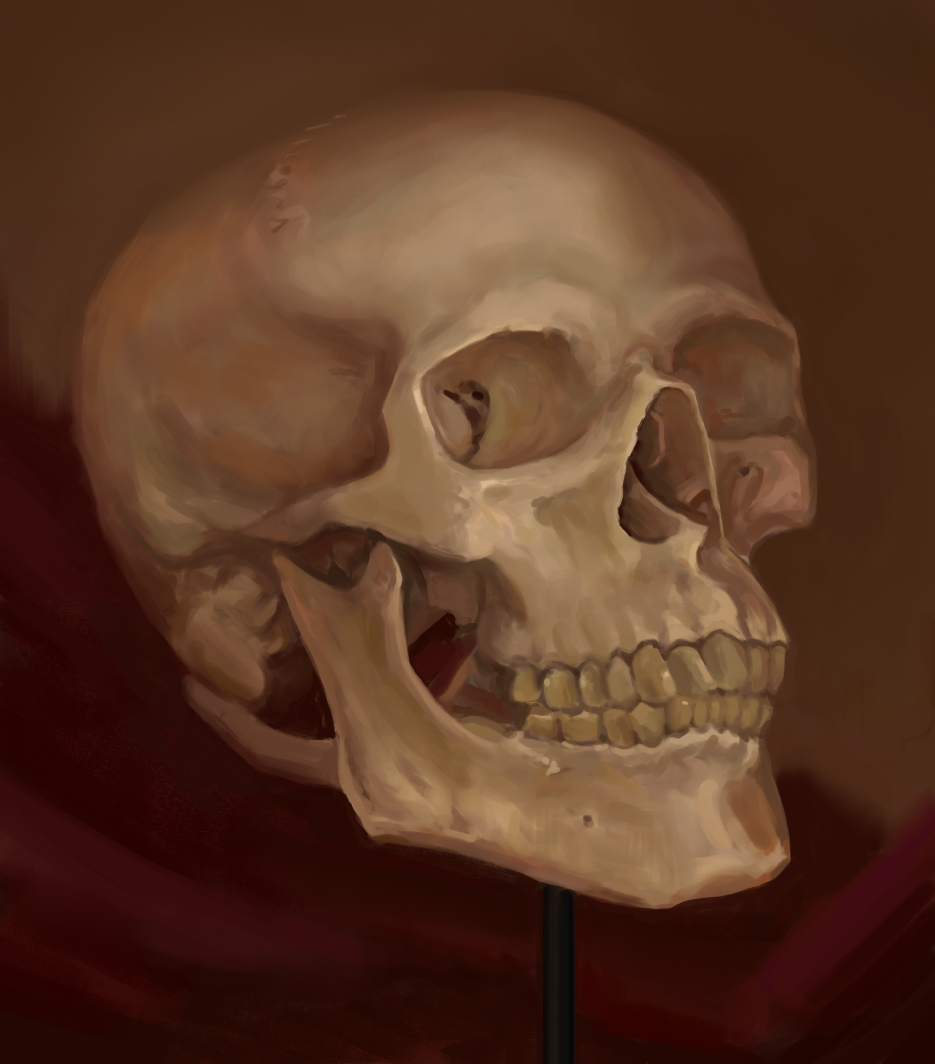 Painting a skull from life - process video