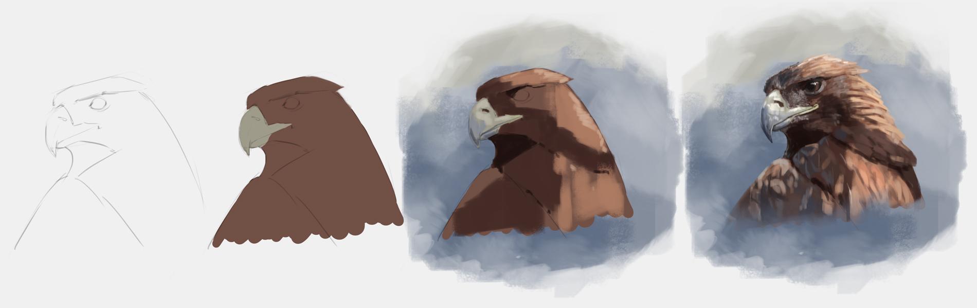 Eagle study process