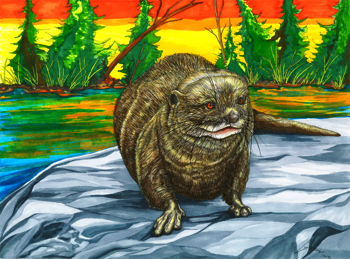 The 'Otter'