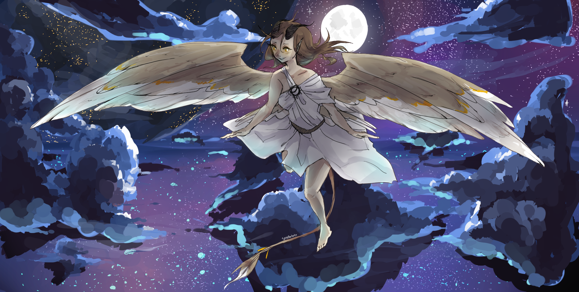 Flying Through The Night Full Of Beauty