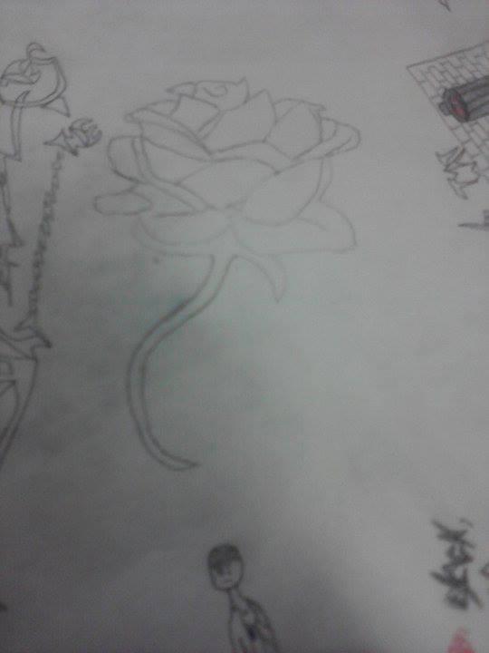 Rose of a thousand petals