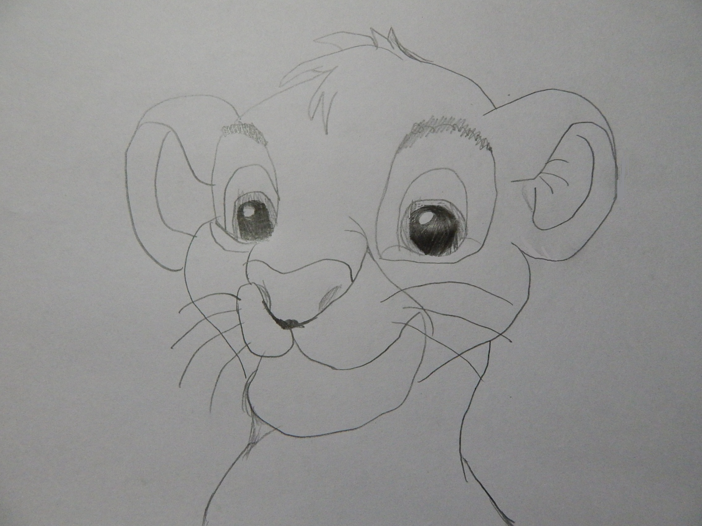simba pencil drawing