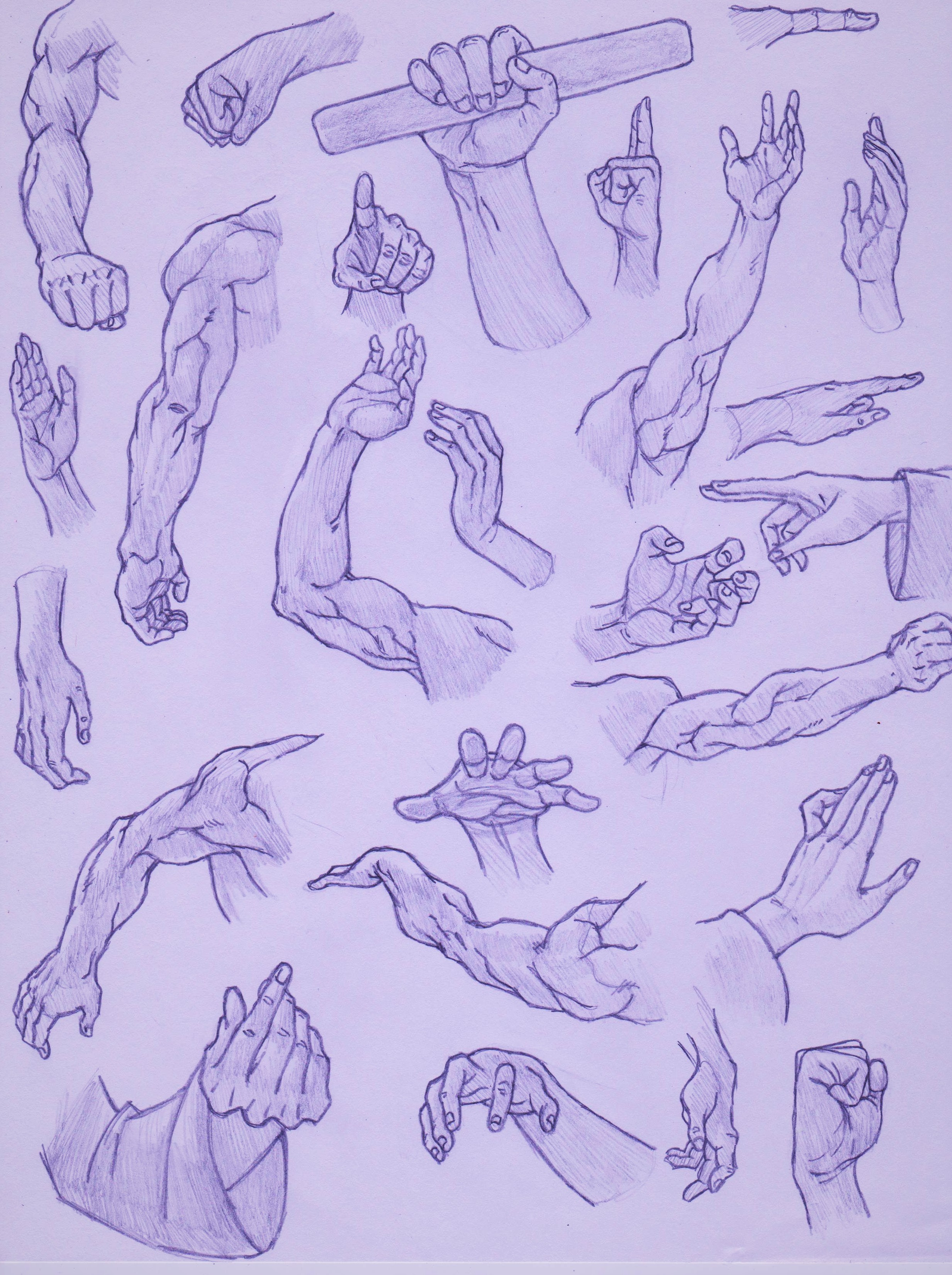 Hands and arm study