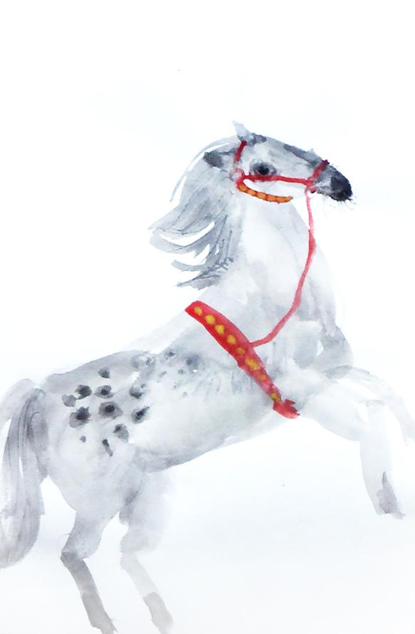 Circus horse II