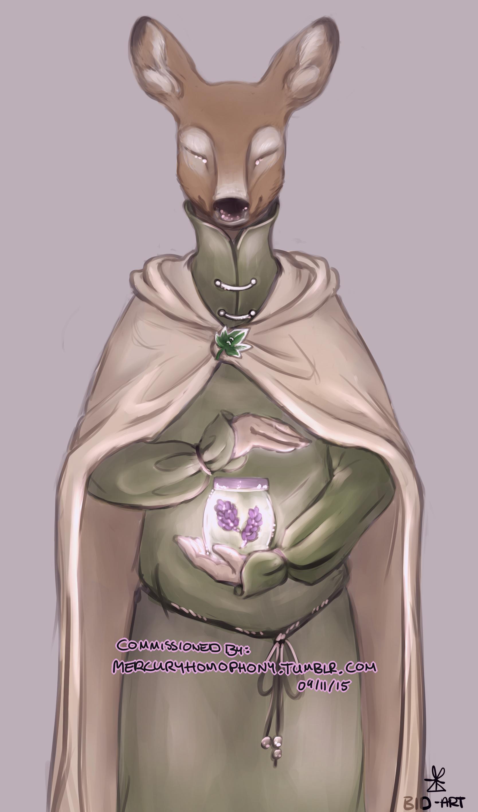 Commission: Doe-Mage