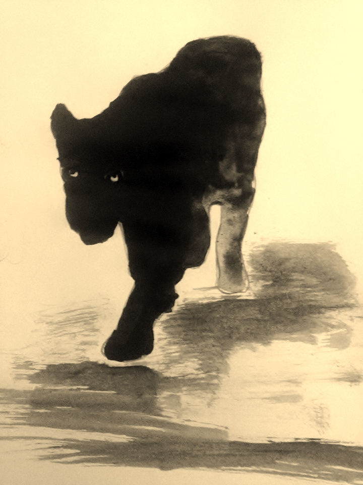 Ink Panther