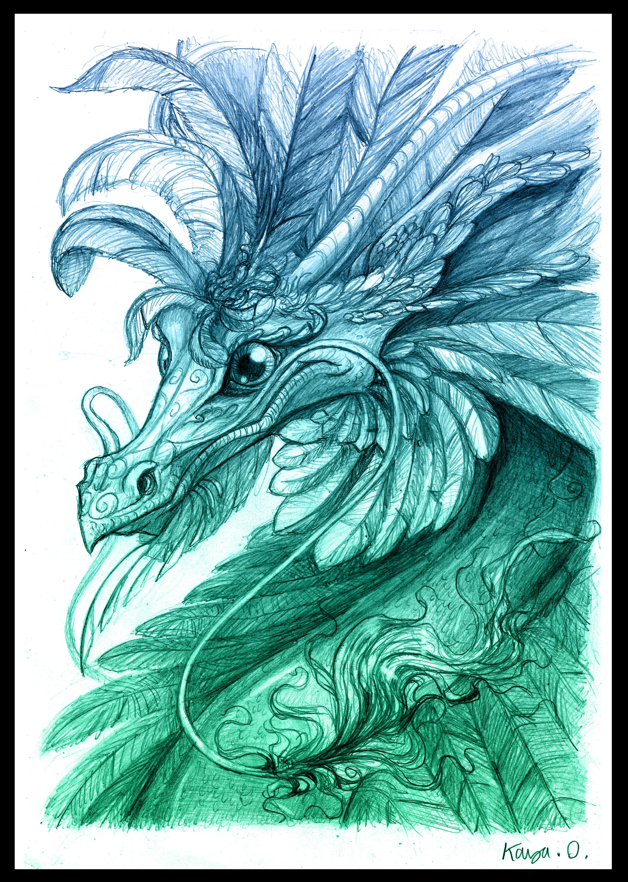 Auroraphrax portrait.