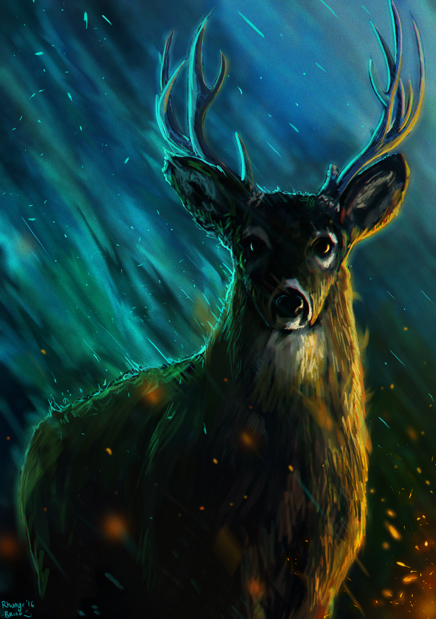 Trans-Dimensional Deer of Space and Time