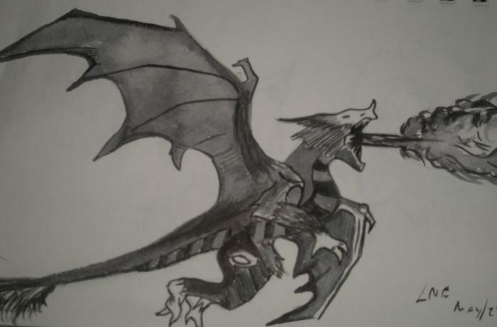 RAWR DRAGON!