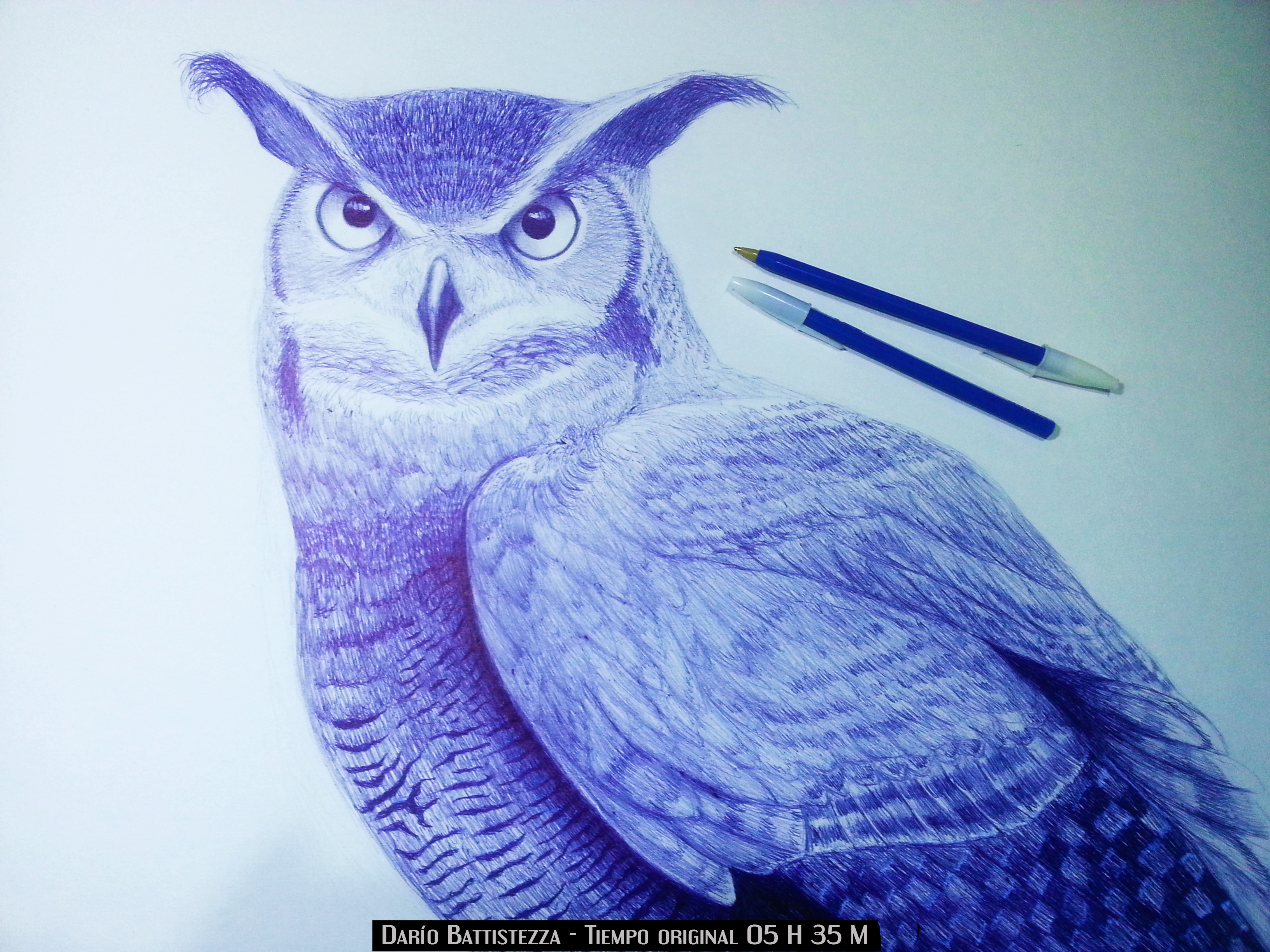 Realistic Owl with blue ballpoint pen