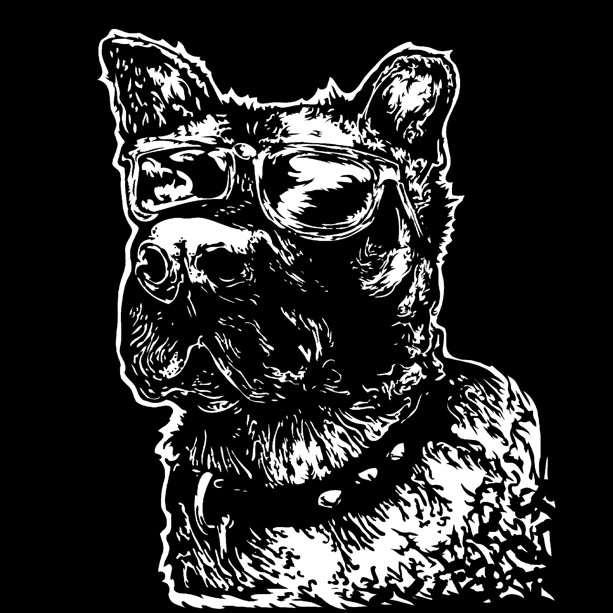 Jameson the dog