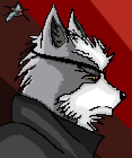 Enter Star Wolf!