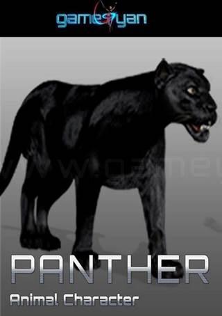 Panther Animal CharacterAnimation