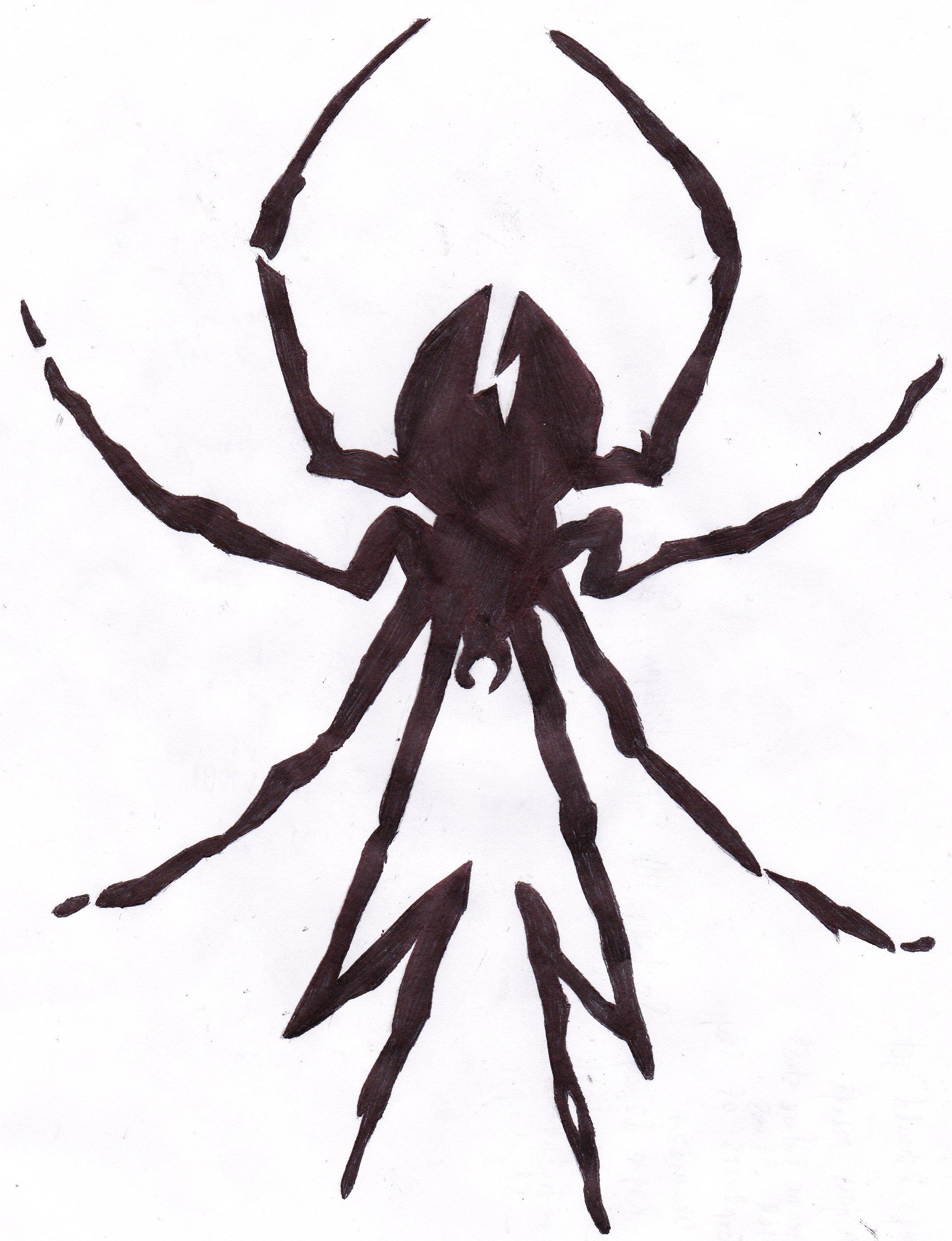 Killjoys spider