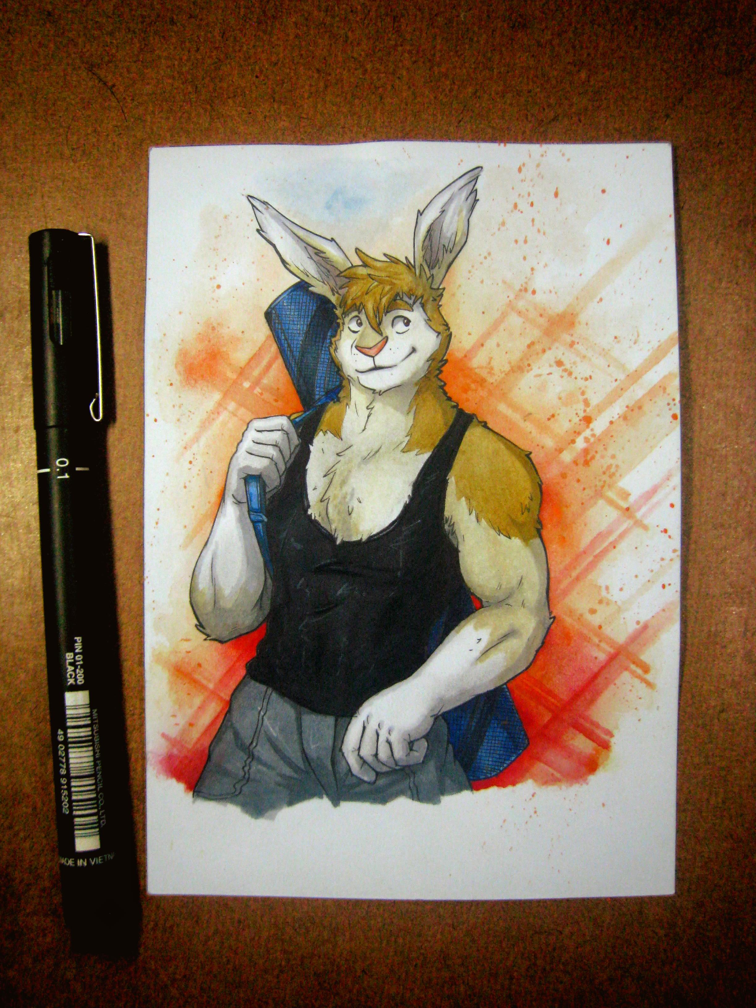 Furry Fan art!