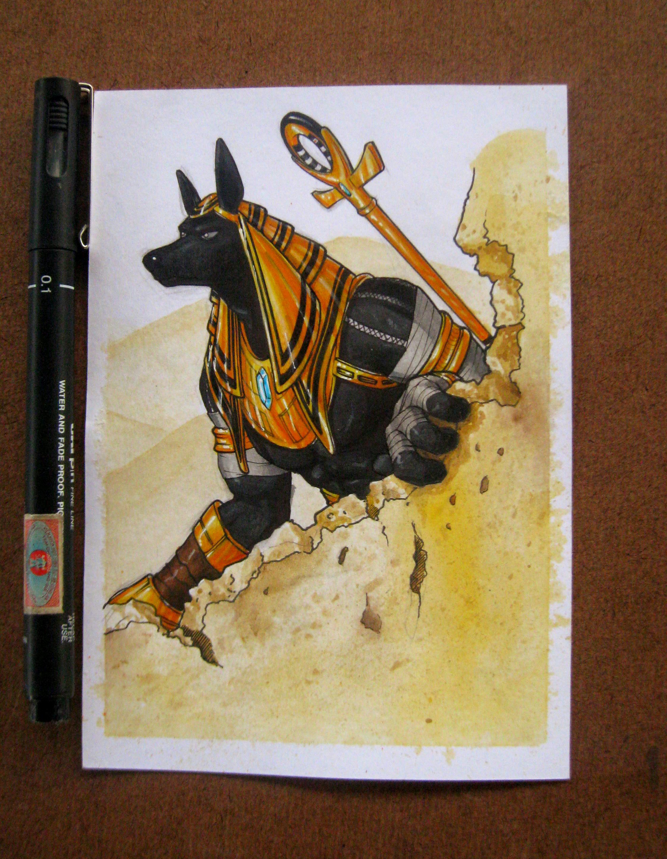 Hapu the Pharaoh hound