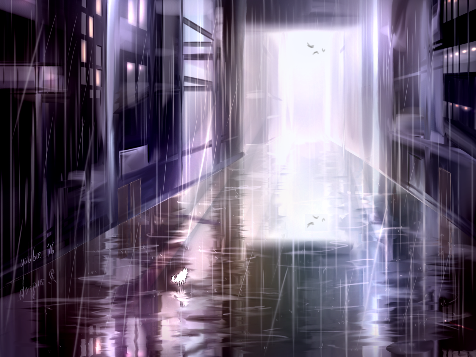 dog's rain