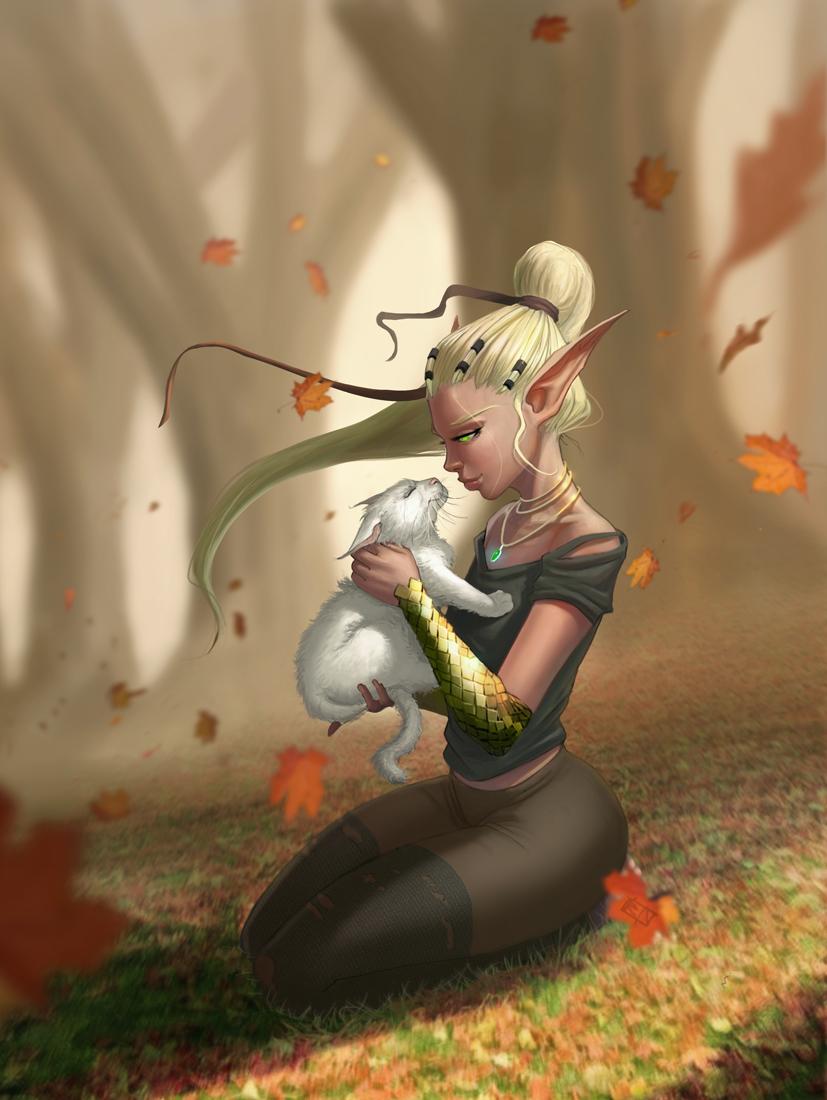 Elf &cat