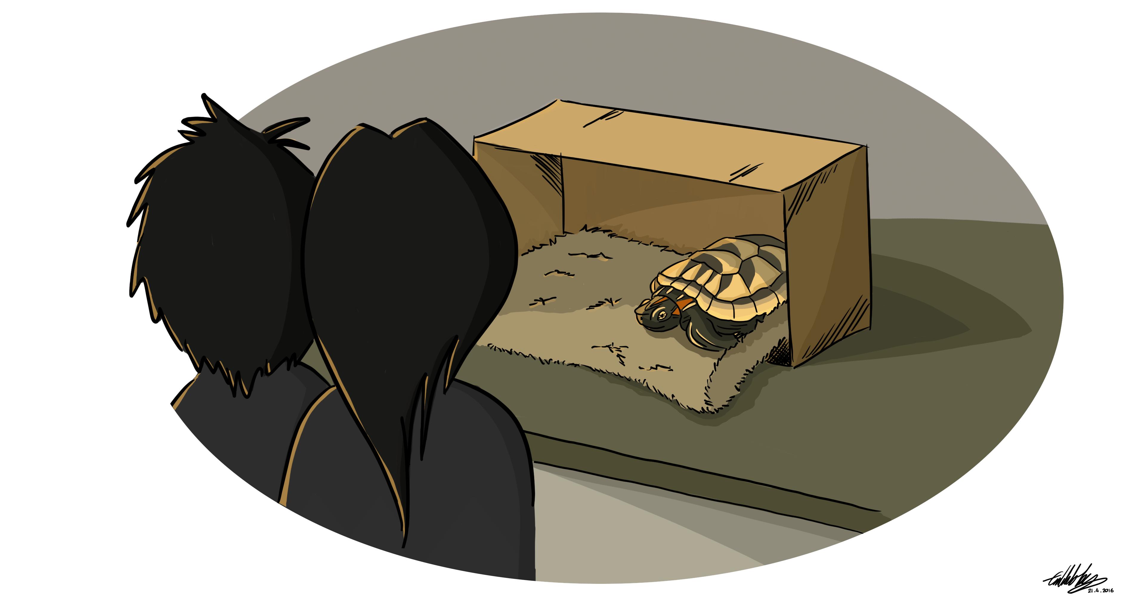 Bringing Him Home