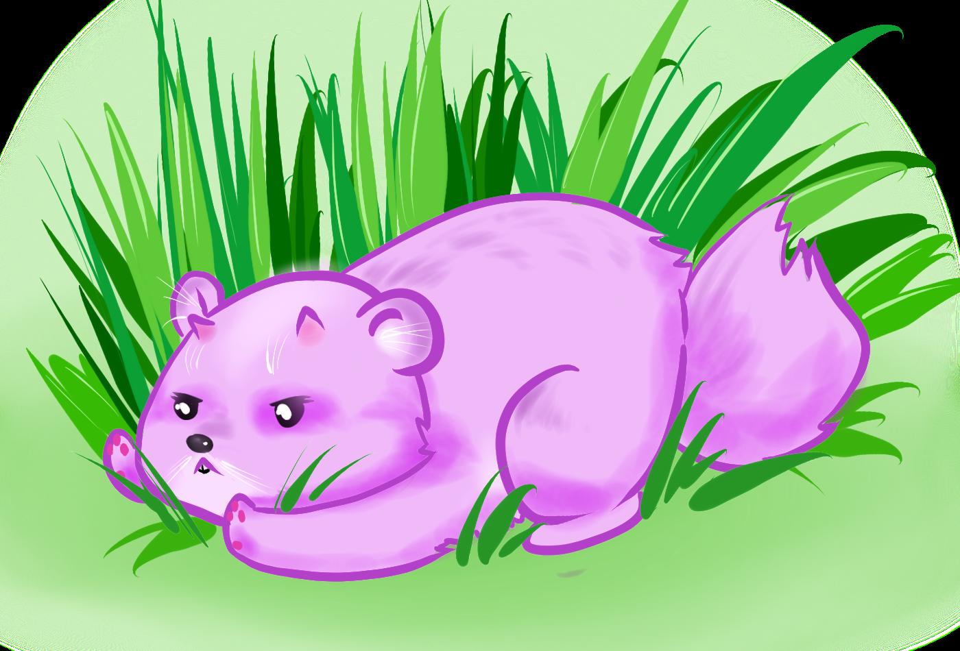 My grass!