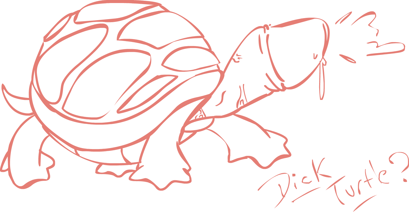 Dick Turtle