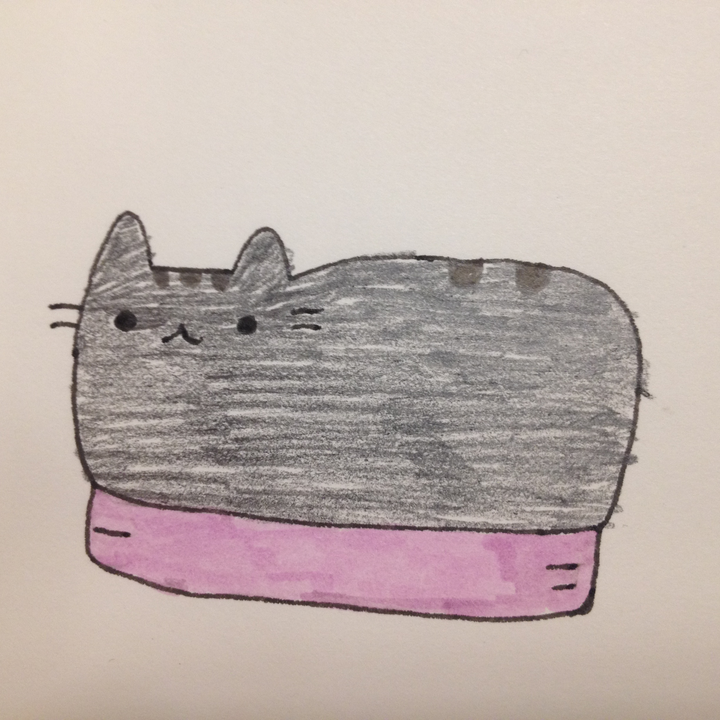Pusheen the Cat!