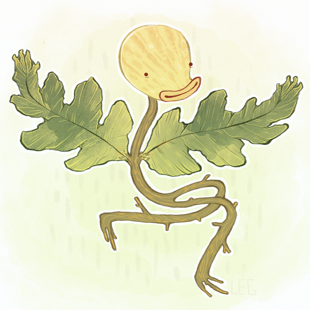 bellsprout!