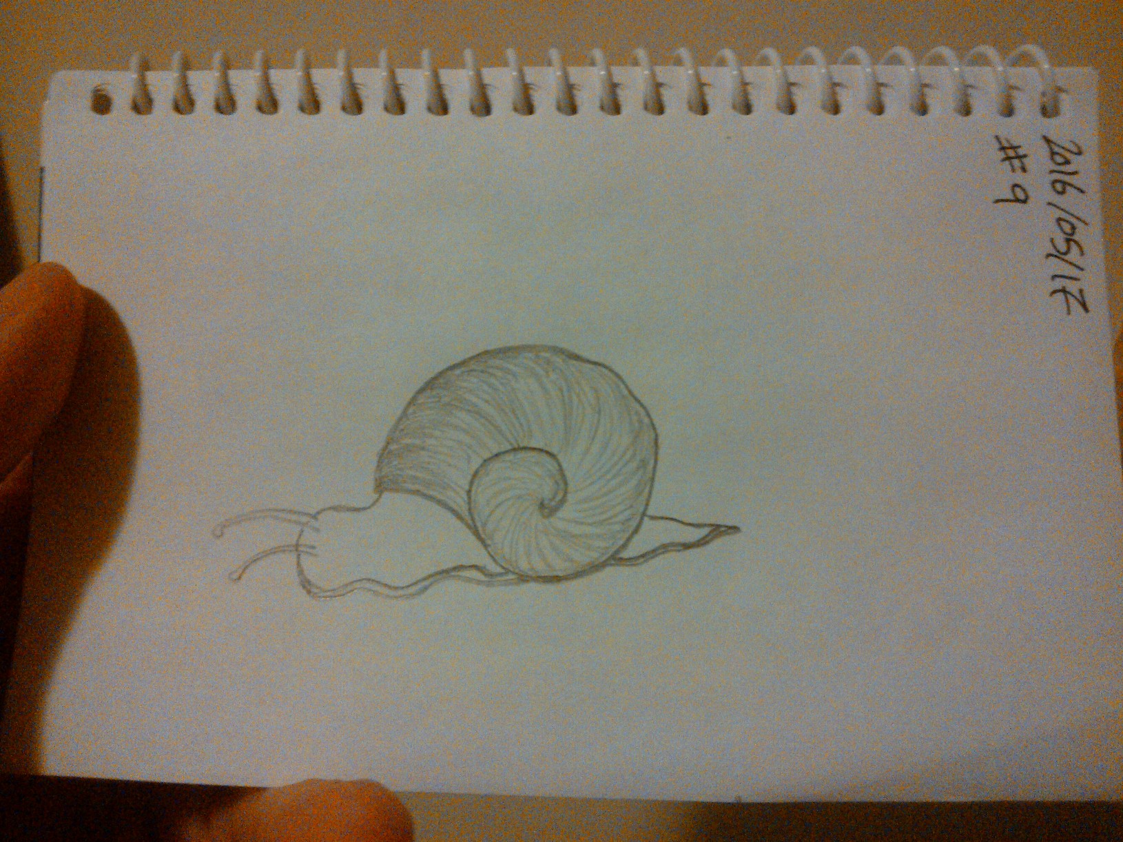 Every Day A Drawing #9: A Snail