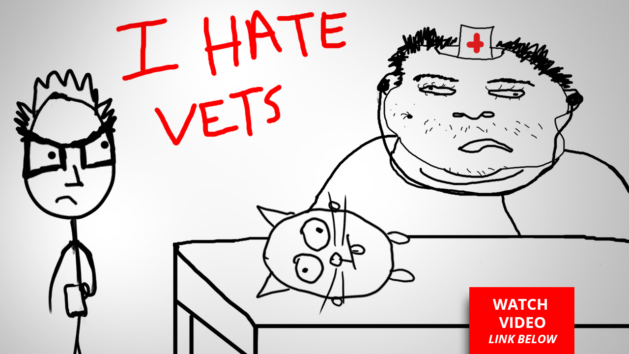 Vets are Scams