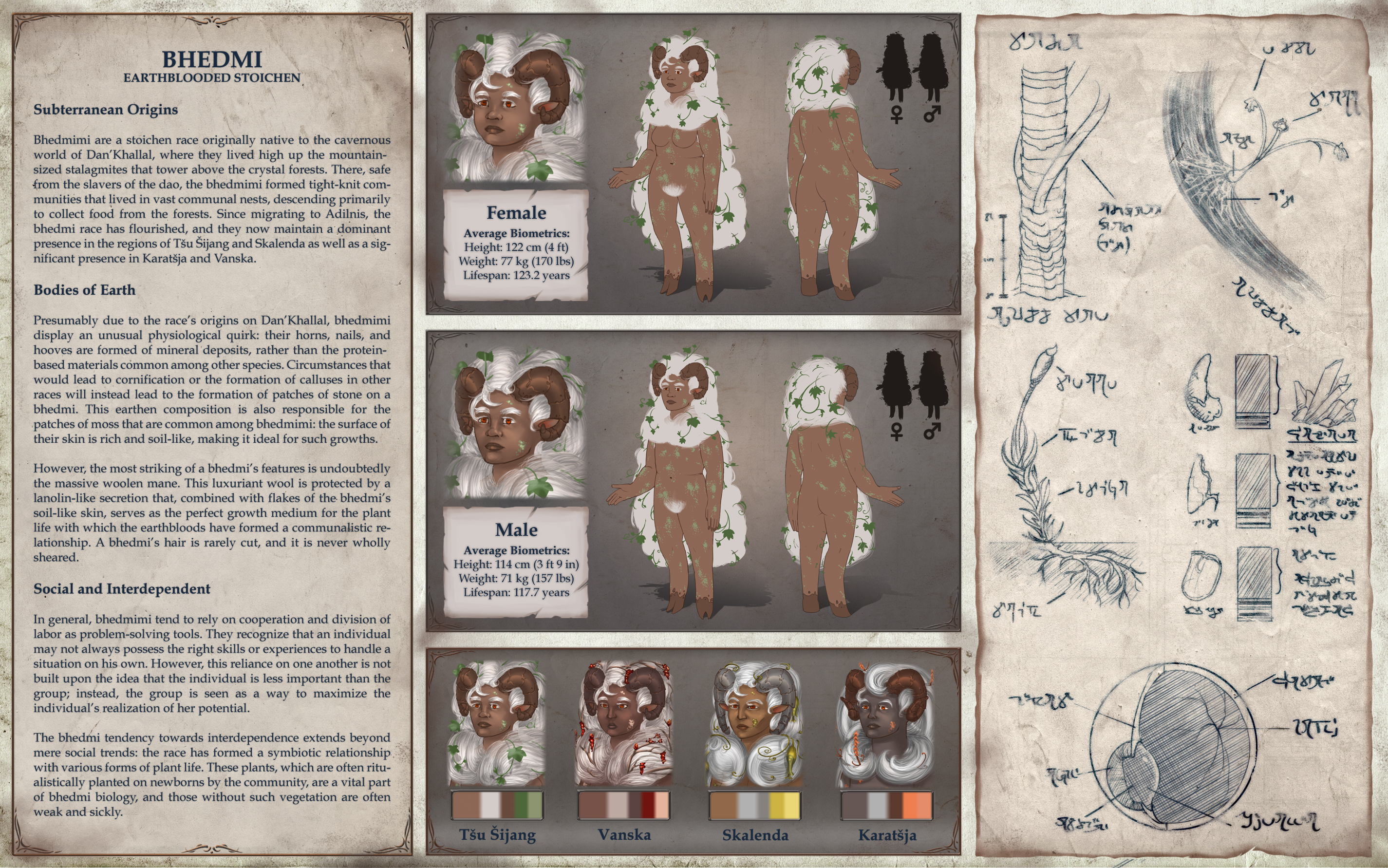 Commission: Earth Sheeple Reference Sheet