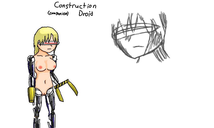 The Construction Companion Droid