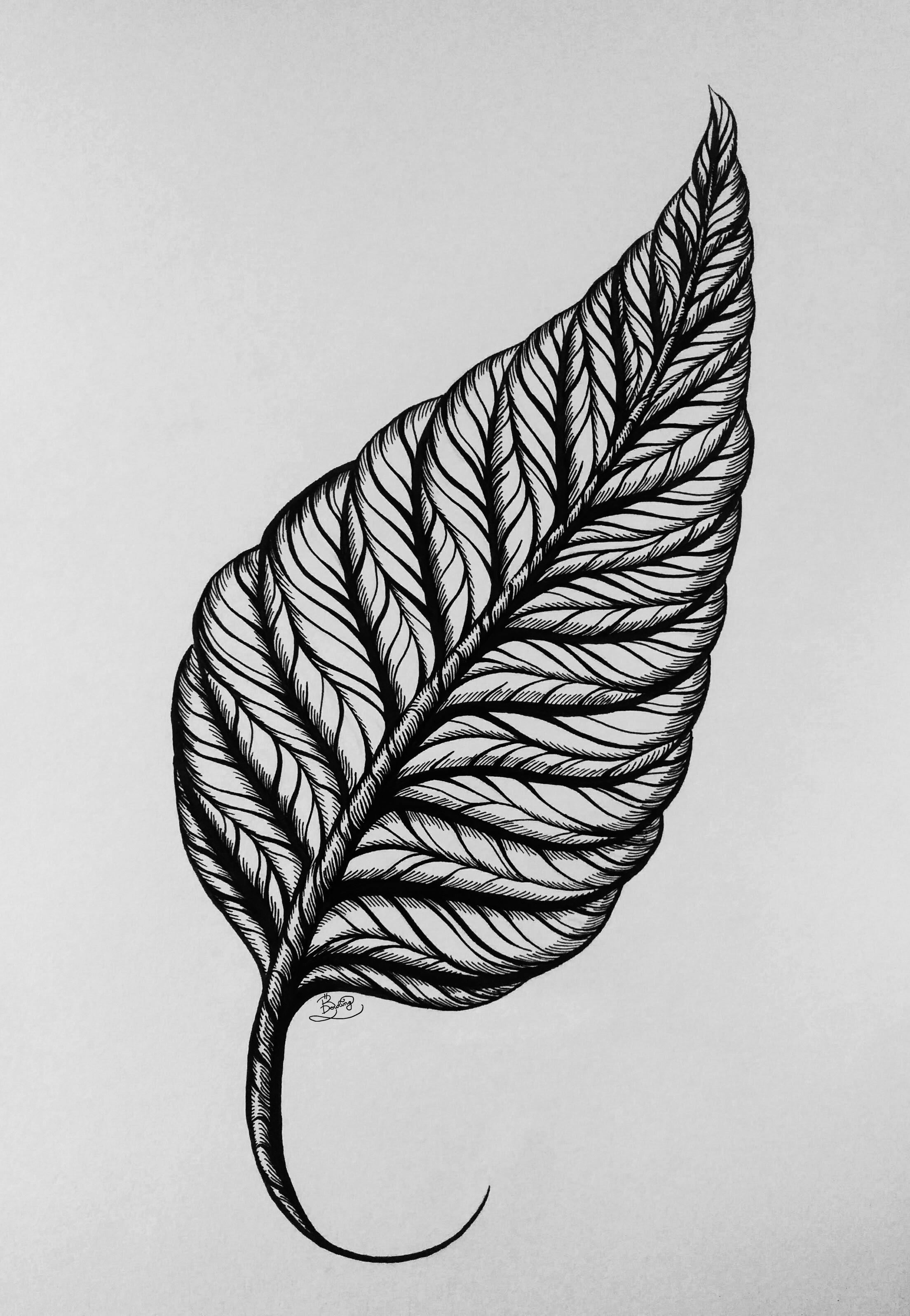 Ink Leaf