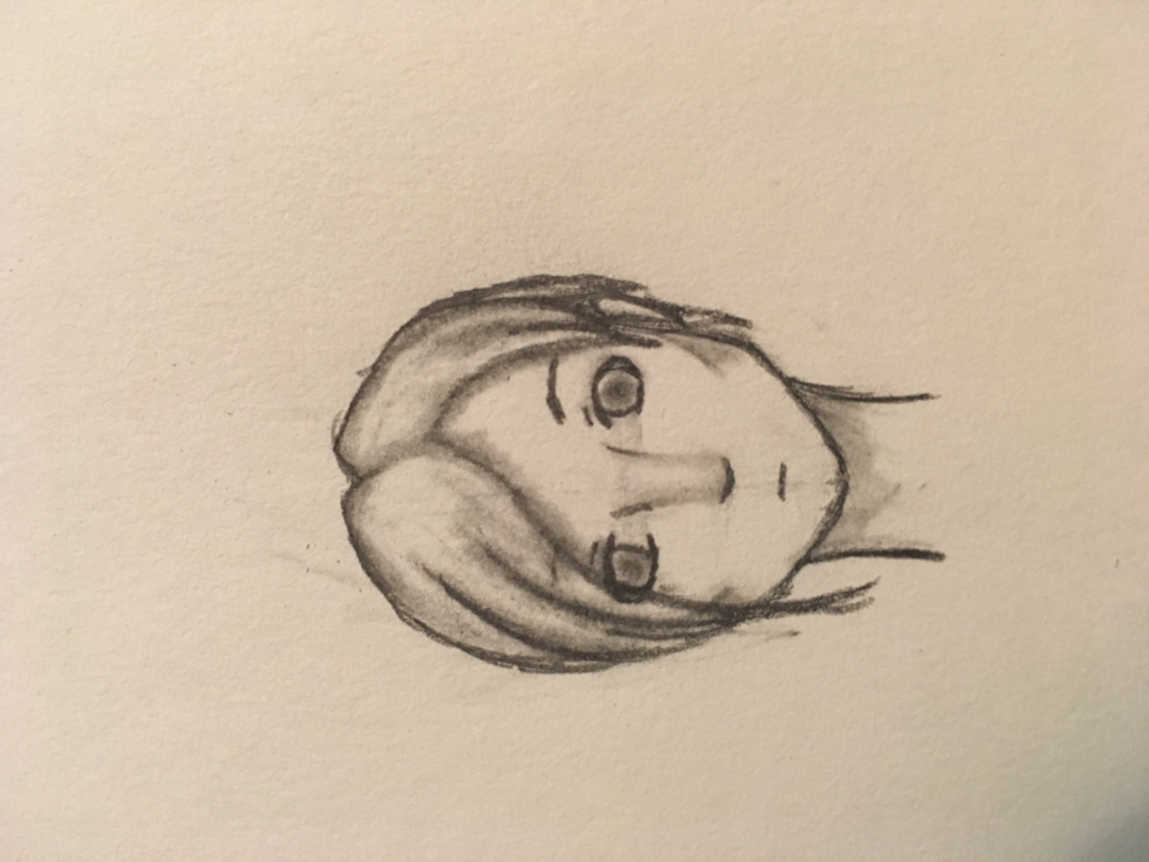 My attempt at shading